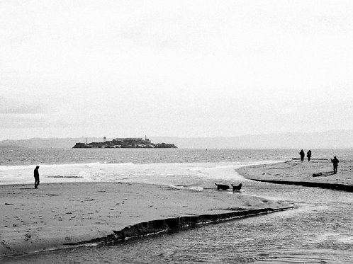 Alcatraz From A Distance