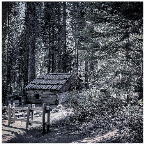 Redwood Cabin