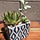 Thumbnail: Square Ceramic Pot, hostess gift blue