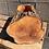 Thumbnail: Empty Bradford Pear Log Planter