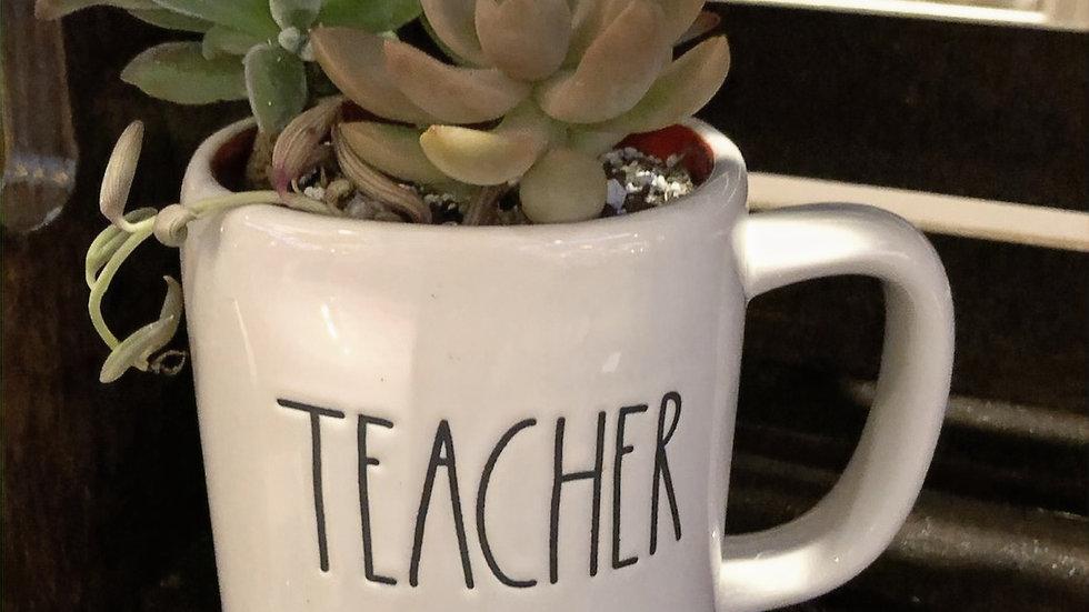 Teacher Mug with small String of Bananas succulent