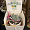 Thumbnail: Gift Box with succulent