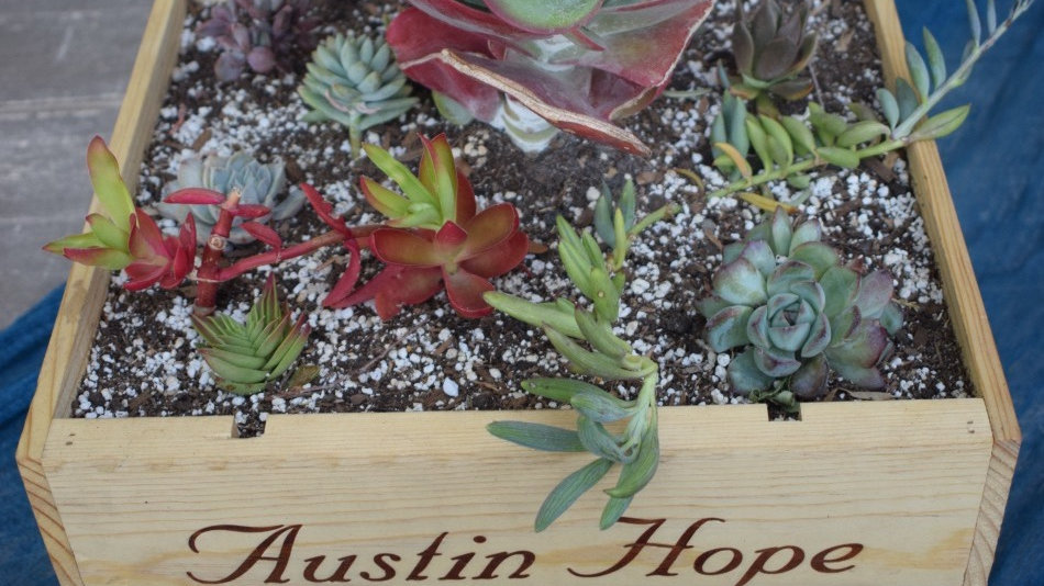 Austin Hope Wine Box