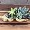 Thumbnail: Ceramic Driftwood log