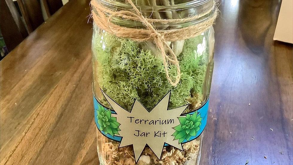 DIY Terrarium Jar with Air Plants