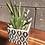 Thumbnail: Square Ceramic Pot, hostess gift grey