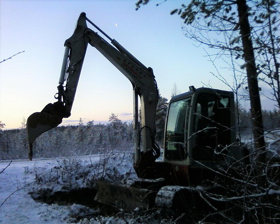 Зимним вечером на Карельском болоте.jpg