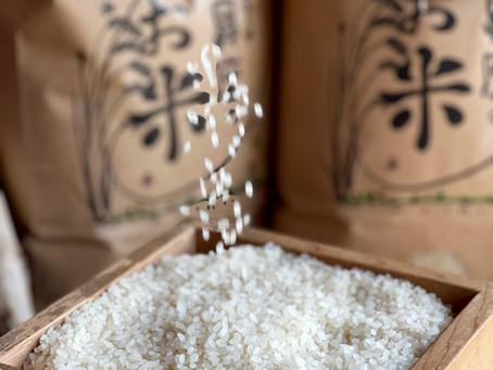 「幻の佐賀県産コシヒカリ・みつせ米」インバウンド機関も絶賛する完全クローズド流通米がまもなく解禁!農家民宿具座から特別な食卓に、至高のお米を〜