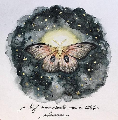 original - mariposa