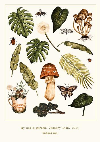 botânico 1