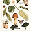 Thumbnail: botânico 1