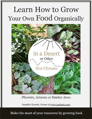 Pre-Order Your Ebook | Learn to Grow Your Own Food Organically in a Desert...