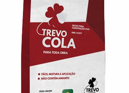 Gesso Cola 5kg
