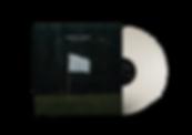 Mockup - Vinyl.png