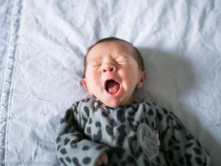 Helena | Ensaio Newborn | Cajamar - SP
