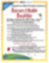 2020 01 20 B&N bookfair flyer.jpg