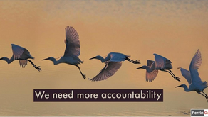 We need more accountability