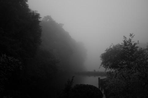 Misty (Land of Mist series), 2018