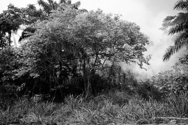 Untitled Landscape (Unbelonging Series), 2017