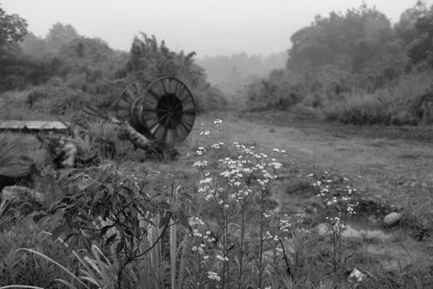 Landscape with Wheel (Land of Mist series), 2018