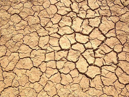 Sécheresse 2017 : 176 communes du Gard reconnues en état de catastrophe naturelle