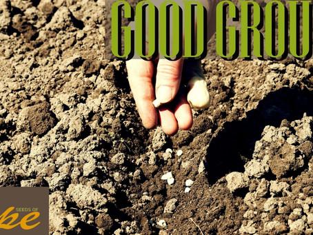 Good Ground