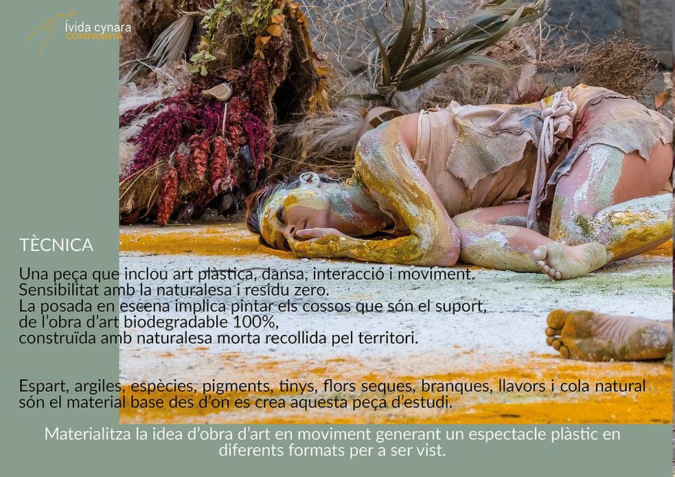 dossier 4.jpg