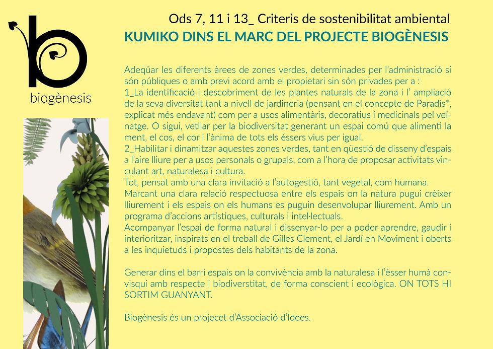 kumiko el projecte13.jpg