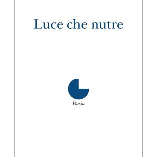 Alfonso Ravazzano, La grammatura dell'incerto (inediti)