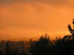 Fiery looking Mist
