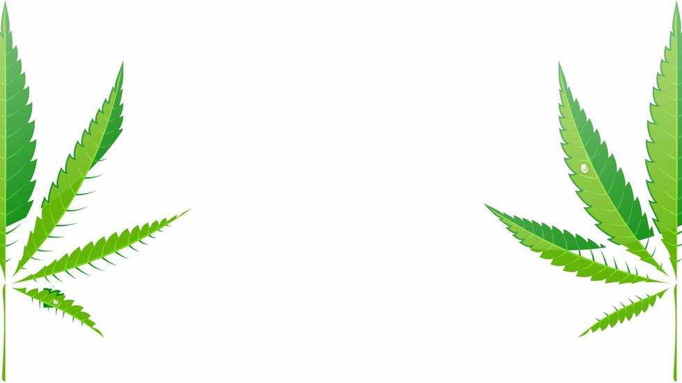DFW Academy Cannabis Science Education Hemp Course