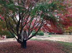 nicoleincherrytree.jpg