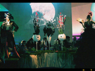 Show for the Tim Burton exhibit at cinématheque de Paris, 2011