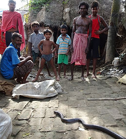 Villagers watch us photographing a cobra