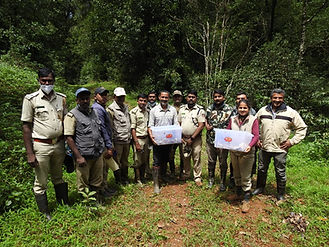 Karnatka-Forest-Department_WildCAT_C_Kalinga-Foundation-team-with-the-hatchlings-before-re