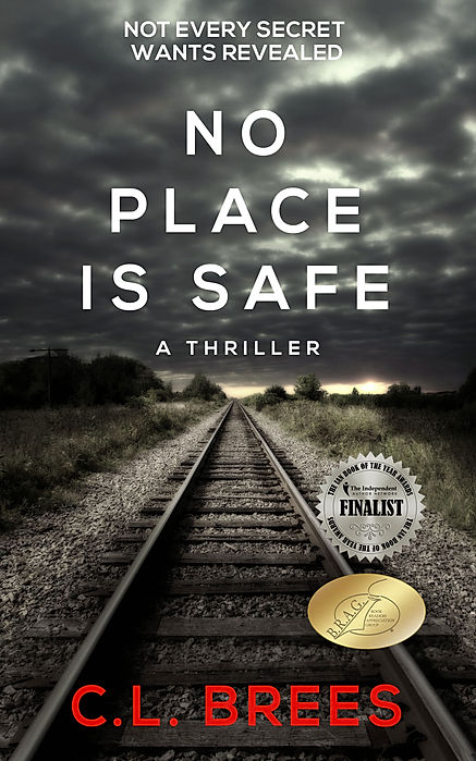 No_Place_is_Safe_Kindle.jpg