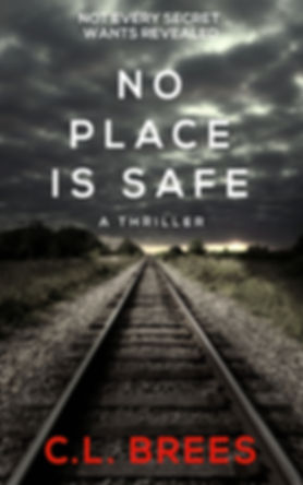 No Place is Safe Kindle Cover.jpg