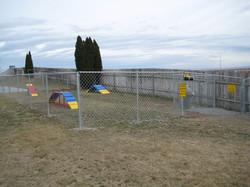 Pet Playground
