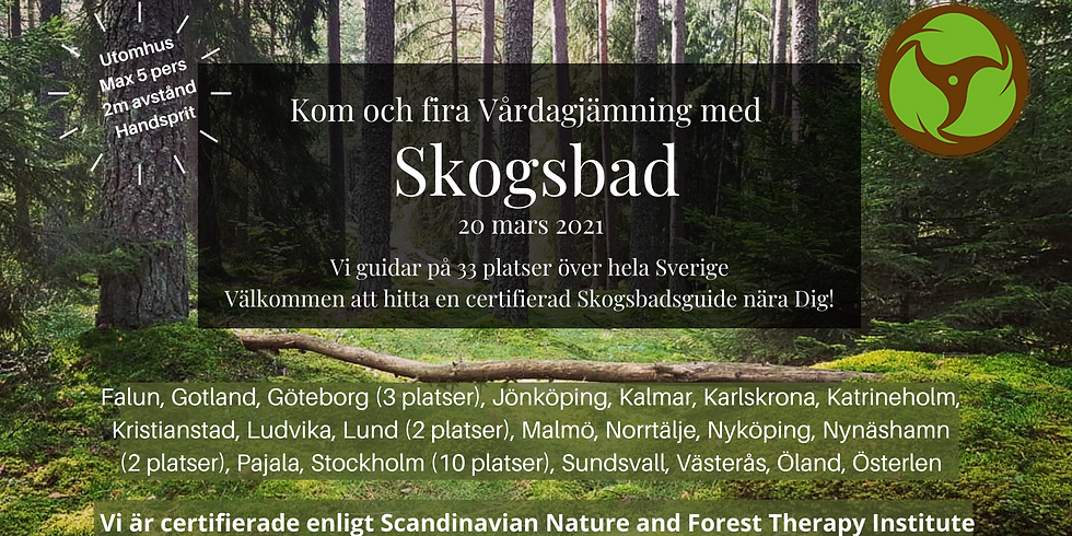 S Törnskogen, Sollentuna: Fira Vårdagjämning med Skogsbad