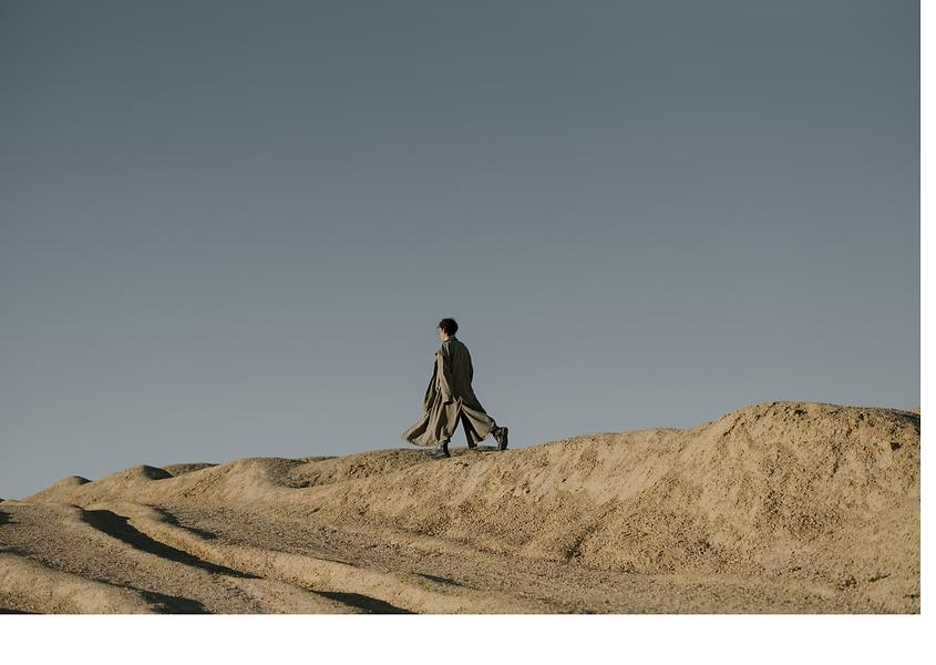 walk in desert.png