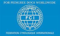 FCI Banner.jpg
