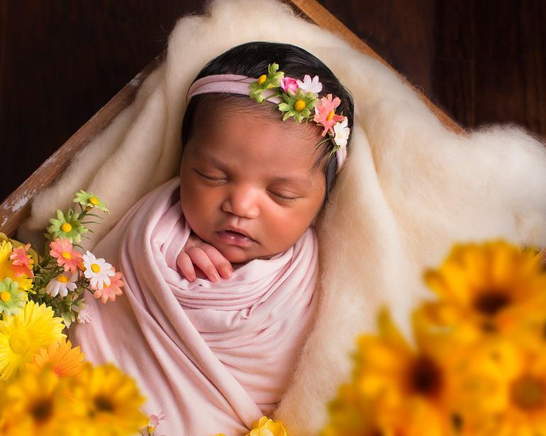 Akshara   Medina, Ohio Newborn Session