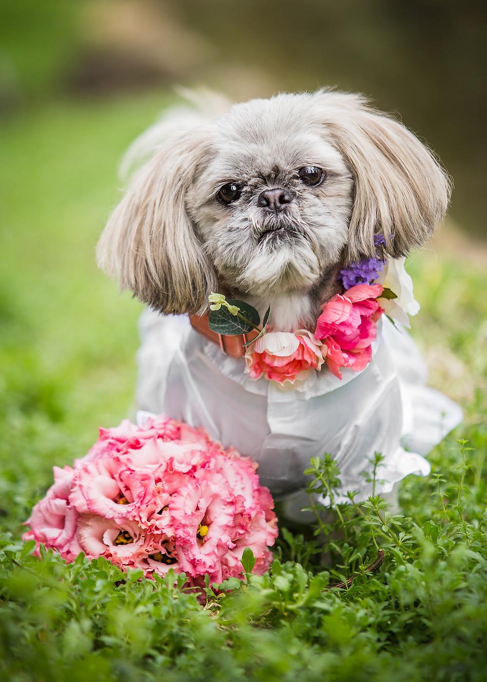 Floral Colar by Tuna & Bear, Bouquet by Dear Valentina Florist
