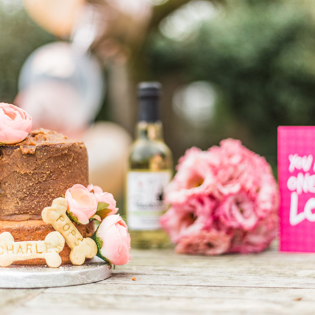 Wedding Cake, Bouquet, Pawty Pooch