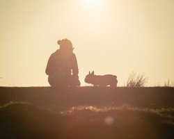 Silhouette of French bulldog and owner on a mountain