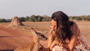 Wauchope Travel on Exploring Australia