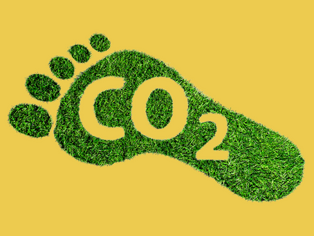 Taking Steps to Reduce Carbon Footprints