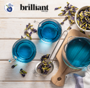 My Blue Tea, Brilliant Coupon, , featured on Brilliant-Online.png