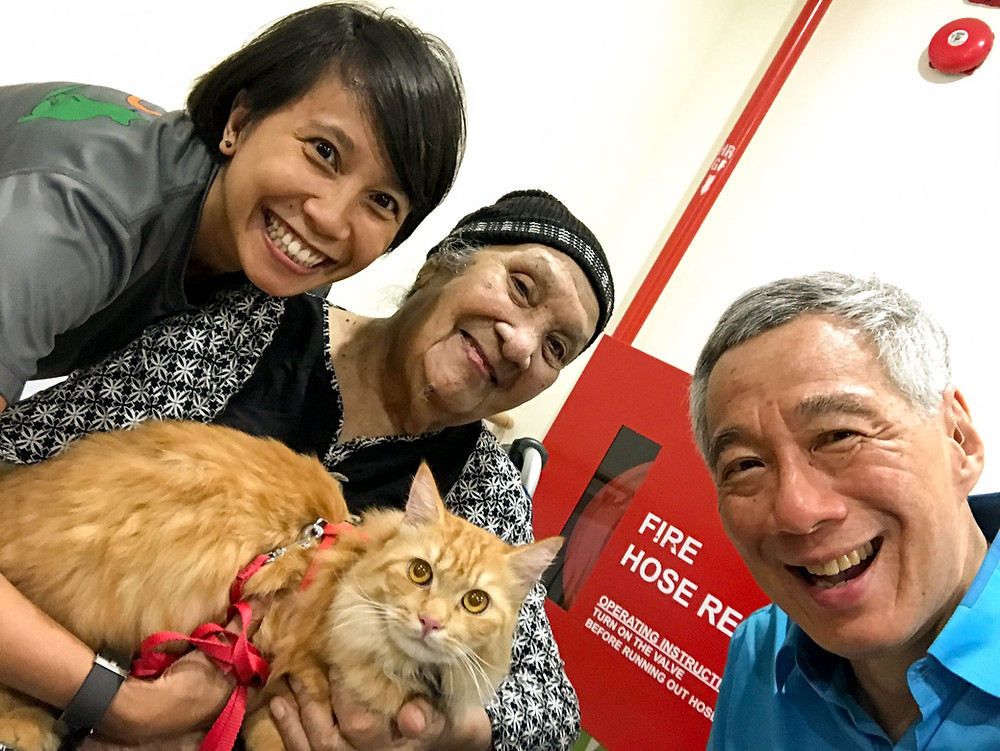 Camellia Gani, with her cat, Simba in a wefie with an elderly resident, Madam Salama Binte Wanitam and Prime Minister of Singapore Mr Lee, , Brilliant-Online