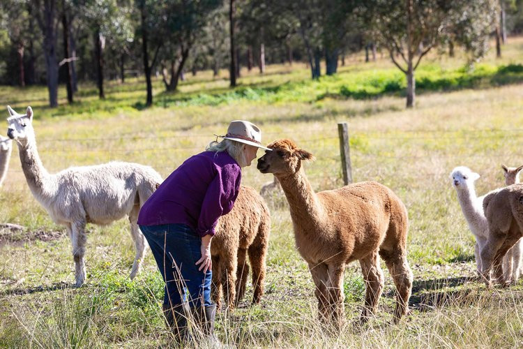 Great Lakes Food Trail, Topi Open Range farm, feature story by Brilliant-Online